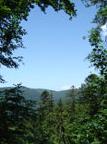 La Forêt de Saint-Antoine et les Cascades de la Vallée du Rahin